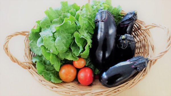 野菜収穫2017-2